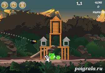 Картинка к игре Энгри бердс в лесу
