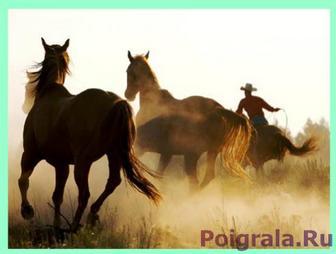 Головоломка лошади картинка 1