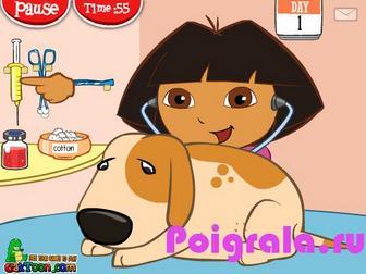 Картинка к игре Даша лечит собак