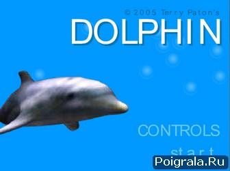 Дельфин плавает картинка 1