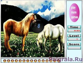 Картинка к игре Лошадки, найди цифры
