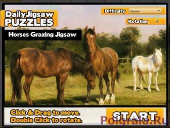 Игра Пазл 3 лошади на лугу