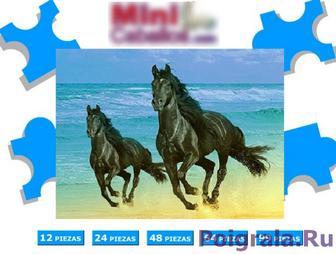 Лошади бегут по пляжу картинка 1