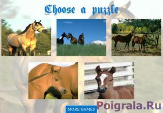 Игра Пазлы про лошадей