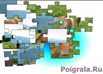 Игра Пазл, лошади на лугу
