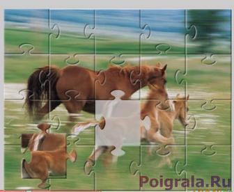 Лошади бегут по полю, пазл картинка 1