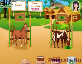 Картинка к игре Уход за лошадью