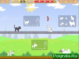 Картинка к игре Влюбленные кошки и собаки