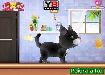 Картинка к игре Салон красоты для кошек