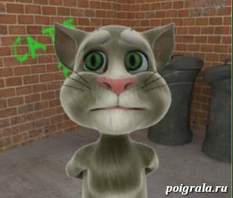 Говорящий кот Том картинка 1