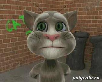 Кот и молоко игра онлайн