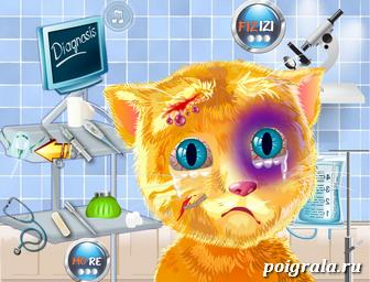 Картинка к игре Лечим кота Рыжика