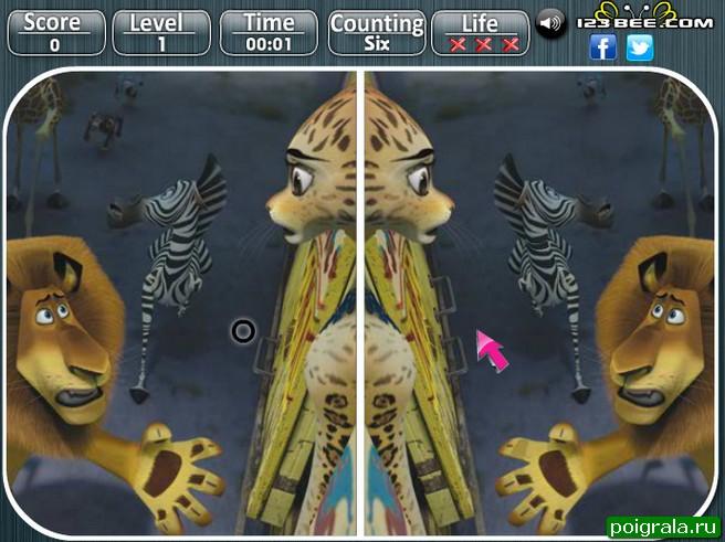 Картинка к игре Мадагаскар 3, найди отличия