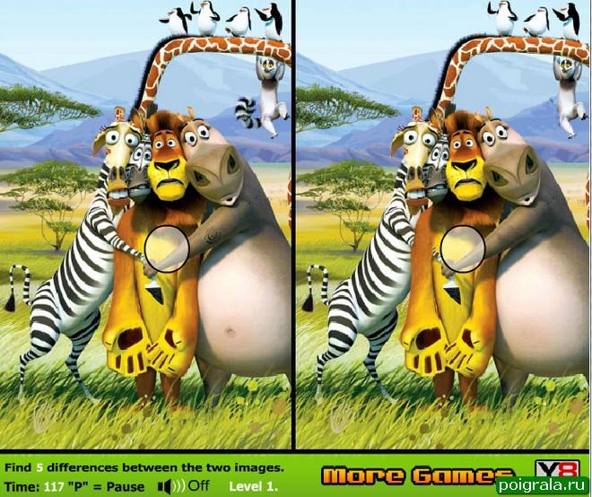 Мадагаскар, найди отличия картинка 1
