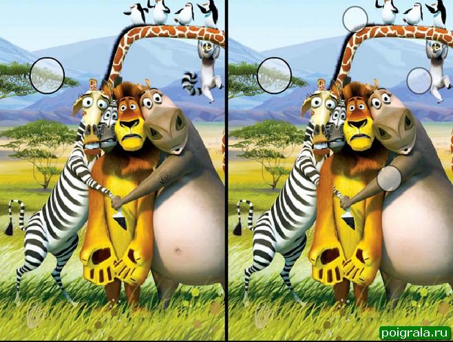 Картинка к игре Мадагаскар, найди отличия