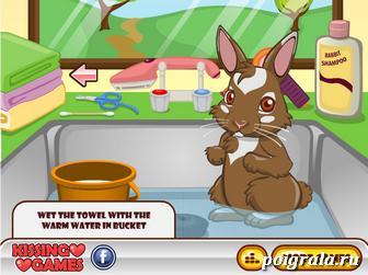 Картинка к игре Милый кролик