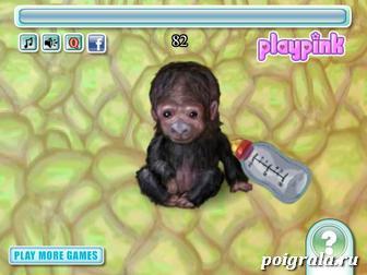 Картинка к игре Уход за обезьянкой