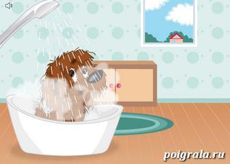 Картинка к игре Уход за собаками