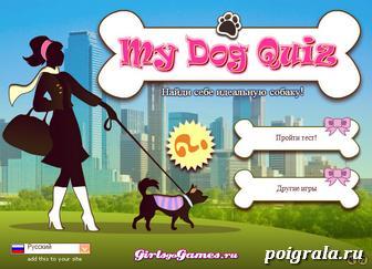 Игра Тест: какая собака тебе подходит
