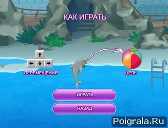 Картинка к игре Выступление дельфина 2