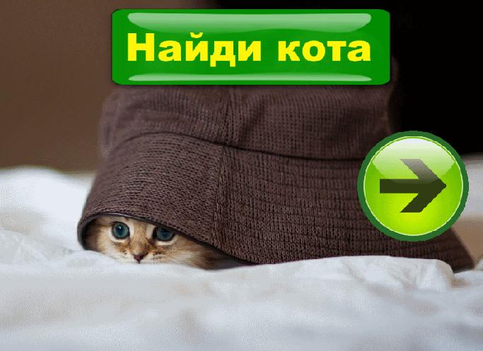 Найди кота на картинке картинка 1