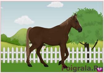 Игра Одевалка лошади
