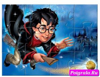 Картинка к игре Пазл, Гарри ловит мяч