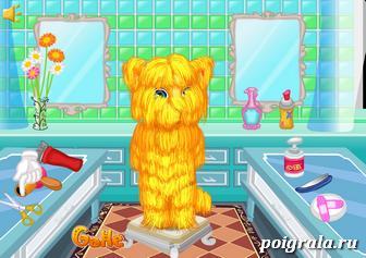 Картинка к игре Побрей кота Рыжика