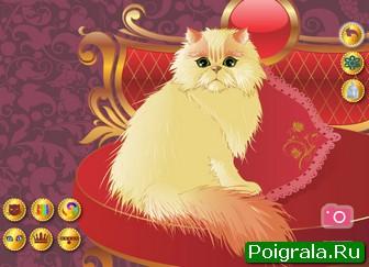 Персидский кот картинка 1