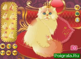 Картинка к игре Персидский кот