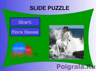 Лошадка в воде картинка 1
