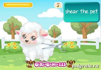 Картинка к игре Уход за овечкой